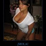 CR_3271_mola