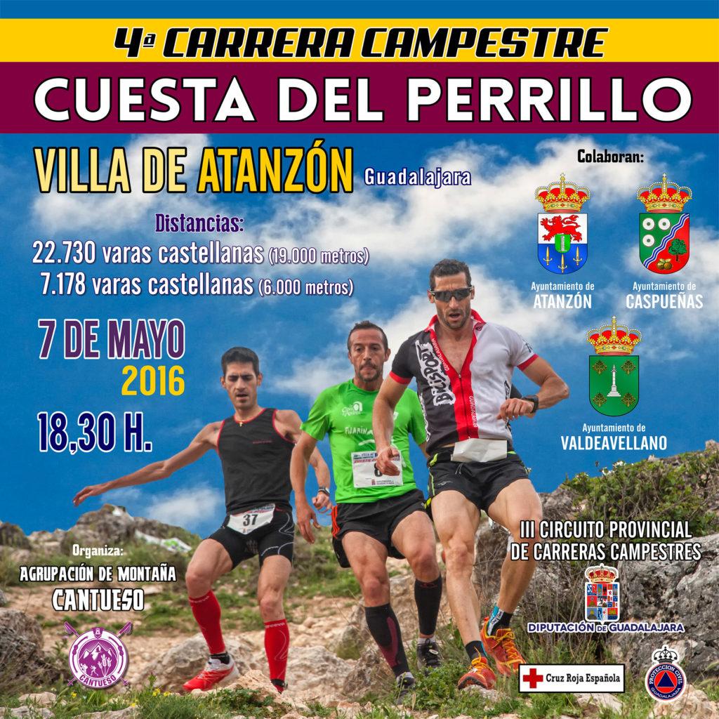 cartel_carrera2016jpg